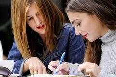 Οι ελκυστικές γυναίκες υπογράφουν μια συμφωνία σε έναν υπαίθριο καφέ Στοκ φωτογραφία με δικαίωμα ελεύθερης χρήσης
