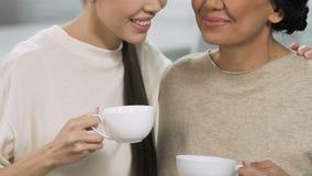 Οι ενήλικες αδελφές που χαμογελούν και που μιλούν με τα φλυτζάνια τσαγιού, σπίτι χαλαρώνουν την ατμόσφαιρα, υποστήριξη απόθεμα βίντεο
