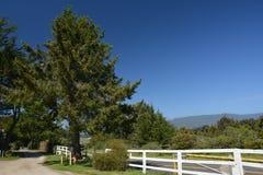 Οι εντυπώσεις από το θέρετρο Pointe φάρων καθοδηγούν το αριθ. 1, Καλιφόρνια ΗΠΑ Στοκ Φωτογραφίες