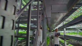 Οι επιστήμονες στα άσπρα παλτά με ένα lap-top και μια ταμπλέτα αναλύουν την εργασία ενός κάθετου αγροκτήματος για να αυξηθούν καθ φιλμ μικρού μήκους