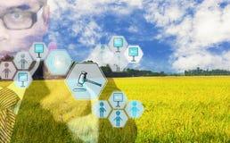 Οι επιχειρηματίες χρησιμοποιούν το κουμπί Τύπου χεριών για να συμμετέχουν στη δημοπρασία, με το αγροτικό προϊόν εικονιδίων auctio στοκ φωτογραφία με δικαίωμα ελεύθερης χρήσης