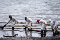 Οι εργαζόμενοι αφαιρούν το αργό πετρέλαιο από μια παραλία Στοκ εικόνα με δικαίωμα ελεύθερης χρήσης