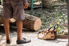 Οι εργαζόμενοι κόβουν το μεγάλο δέντρο από το πριόνι αλυσίδων Στοκ φωτογραφία με δικαίωμα ελεύθερης χρήσης