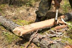 Οι εργασίες δασοφυλάκων στα ξύλα Στοκ φωτογραφίες με δικαίωμα ελεύθερης χρήσης