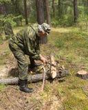 Οι εργασίες δασοφυλάκων στα ξύλα Στοκ εικόνα με δικαίωμα ελεύθερης χρήσης