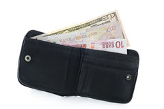 οι ευρο- σημειώσεις δολαρίων σφυροκοπούν το πορτοφόλι Στοκ φωτογραφία με δικαίωμα ελεύθερης χρήσης