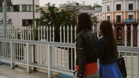 Οι ευτυχείς νέοι φίλοι γυναικών που περπατούν πέρα από τη γέφυρα με τις τσάντες αγορών, ομιλία συζητούν, πίσω άποψη, stedicam πυρ απόθεμα βίντεο