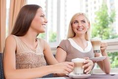 Οι ελκυστικοί νέοι θηλυκοί φίλοι απολαμβάνουν το τους Στοκ Εικόνα