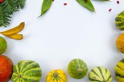 Οι ζωηρόχρωμες διακοσμητικές κολοκύθες πλαισίων, ξεραίνουν τα φύλλα και τα μούρα Το επίπεδο προτύπων φθινοπώρου βάζει το σχέδιο Στοκ εικόνες με δικαίωμα ελεύθερης χρήσης