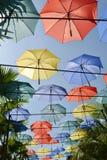 Οι ζωηρόχρωμες ομπρέλες Στοκ Εικόνες