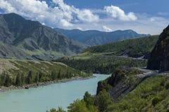 οι ημέρες altai διαρκούν το καλοκαίρι βουνών Ποταμός Katun Όμορφο τοπίο ορεινών περιοχών russ Στοκ Εικόνες