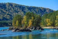 οι ημέρες altai διαρκούν το καλοκαίρι βουνών Στοκ εικόνες με δικαίωμα ελεύθερης χρήσης