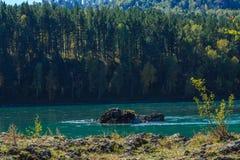 οι ημέρες altai διαρκούν το καλοκαίρι βουνών Στοκ φωτογραφία με δικαίωμα ελεύθερης χρήσης