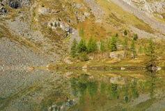 οι ημέρες altai διαρκούν το καλοκαίρι βουνών Στοκ εικόνα με δικαίωμα ελεύθερης χρήσης
