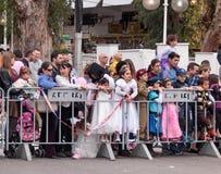 Οι θεατές από πίσω από τη διαίρεση του φράκτη εξετάζουν την παρέλαση καρναβαλιού Στοκ Εικόνες