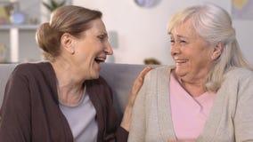 Οι θηλυκοί φίλοι που γελούν στις αστείες ιστορίες, που έχουν τη διασκέδαση μαζί, κορίτσια μιλούν απόθεμα βίντεο