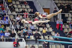 Οι θηλυκοί αθλητές εκτελούν την άσκηση επάνω η κατάδυση αφετηριών Στοκ Εικόνα