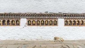 Οι θρησκευτικά ρόδες και το σκυλί προσευχής στο Μπουτάν Στοκ εικόνες με δικαίωμα ελεύθερης χρήσης