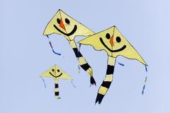 οι ικτίνοι χαμογελούν κίτρινο Στοκ φωτογραφίες με δικαίωμα ελεύθερης χρήσης