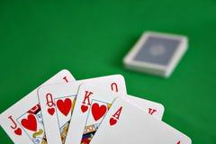 οι κάρτες ξεπλένουν τη βασιλική εμφάνιση Στοκ Εικόνα
