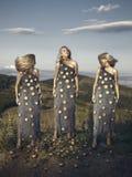 Οι κάρδοι γυναικών Στοκ Φωτογραφία