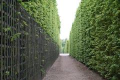 οι κήποι των Βερσαλλιών Στοκ φωτογραφίες με δικαίωμα ελεύθερης χρήσης