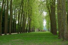 οι κήποι των Βερσαλλιών Στοκ Φωτογραφία