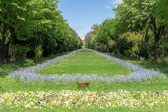 Οι κήποι Cismigiu (Parcul Cismigiu) στο Βουκουρέστι Στοκ Εικόνες