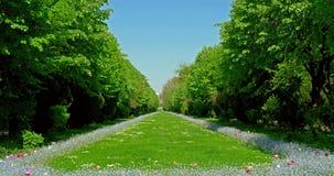 Οι κήποι Cismigiu (Parcul Cismigiu) φιλμ μικρού μήκους