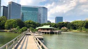 Οι κήποι Hamarikyu είναι ένας μεγάλος και ελκυστικός κήπος τοπίων στο Τόκιο, περιοχή Chuo, ποταμός Sumida, Ιαπωνία φιλμ μικρού μήκους