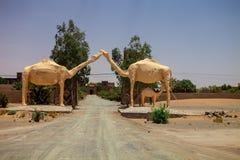 Οι καμήλες διαμορφώνουν την πύλη στο ξενοδοχείο, Σαχάρα, Μαρόκο Στοκ φωτογραφίες με δικαίωμα ελεύθερης χρήσης