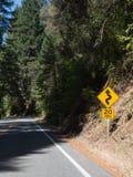 Οι καμπύλες μπροστά, μειώνουν την ταχύτητα στοκ φωτογραφία με δικαίωμα ελεύθερης χρήσης
