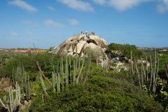 οι Καραϊβικές Θάλασσες Το νησί της Αρούμπα Εθνικό πάρκο Arikok Βράχος Ayo πετρών Στοκ φωτογραφία με δικαίωμα ελεύθερης χρήσης