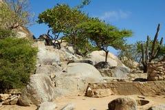 οι Καραϊβικές Θάλασσες Το νησί της Αρούμπα Εθνικό πάρκο Arikok Στοκ εικόνα με δικαίωμα ελεύθερης χρήσης