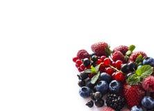οι καρποί μούρων ανασκόπη&sigma Ώριμα σταφίδες, σμέουρα, βακκίνια, φράουλες και βατόμουρα με ένα mi Στοκ Φωτογραφίες