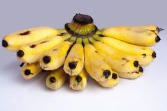 οι καρποί μπανανών ανασκόπησης απομόνωσαν το λευκό Στοκ εικόνα με δικαίωμα ελεύθερης χρήσης