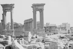 Οι καταστροφές της αρχαίας πόλης Palmyra, Συρία Στοκ εικόνες με δικαίωμα ελεύθερης χρήσης