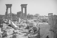 Οι καταστροφές της αρχαίας πόλης Palmyra, Συρία Στοκ εικόνα με δικαίωμα ελεύθερης χρήσης