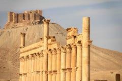 Οι καταστροφές της αρχαίας πόλης Palmyra, Συρία Στοκ φωτογραφία με δικαίωμα ελεύθερης χρήσης