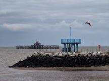 Οι καταστροφές της παλαιάς αποβάθρας στον κόλπο του Χέρνη με το λιμενικό τοίχο και τον γκρίζο ουρανό με τον πετώντας γλάρο Στοκ φωτογραφία με δικαίωμα ελεύθερης χρήσης