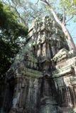 Οι καταστροφές του ναού σύνθετου του TA Prohm στην Καμπότζη Αρχιτεκτονική κληρονομιά της Khmer αυτοκρατορίας Ένα αριστούργημα του στοκ εικόνες με δικαίωμα ελεύθερης χρήσης