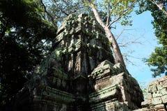 Οι καταστροφές του ναού σύνθετου του TA Prohm στην Καμπότζη Αρχιτεκτονική κληρονομιά της Khmer αυτοκρατορίας Ένα αριστούργημα του στοκ φωτογραφίες