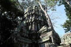 Οι καταστροφές του ναού σύνθετου του TA Prohm στην Καμπότζη Αρχιτεκτονική κληρονομιά της Khmer αυτοκρατορίας Ένα αριστούργημα του στοκ φωτογραφίες με δικαίωμα ελεύθερης χρήσης