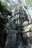 Οι καταστροφές του ναού σύνθετου του TA Prohm στην Καμπότζη Αρχιτεκτονική κληρονομιά της Khmer αυτοκρατορίας Ένα αριστούργημα του στοκ εικόνα με δικαίωμα ελεύθερης χρήσης