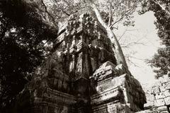 Οι καταστροφές του ναού σύνθετου του TA Prohm στην Καμπότζη Αρχιτεκτονική κληρονομιά της Khmer αυτοκρατορίας Ένα αριστούργημα του στοκ φωτογραφία με δικαίωμα ελεύθερης χρήσης