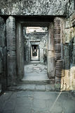 οι καταστροφές του ναού TA Prohm σε Angkor Wat Siem συγκεντρώνουν, Καμπότζη, 12ος αιώνας Στοκ Εικόνα