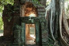 Οι καταστροφές του ναού TA Prom, ιστορικό πάρκο Angkor, Siem συγκεντρώνουν, Καμπότζη Στοκ εικόνα με δικαίωμα ελεύθερης χρήσης