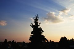 Οι καυτές θερινές ημέρες είναι μεγάλη ευκαιρία στοκ φωτογραφία με δικαίωμα ελεύθερης χρήσης