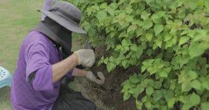 Οι κηπουροί κάθονται σκάβουν το έδαφος και να φτυαρίσουν φιλμ μικρού μήκους