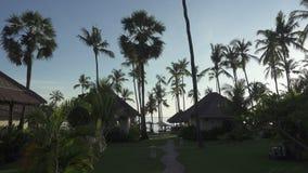 Οι κινήσεις καμερών πέρα από το έδαφος του τροπικού ξενοδοχείου θάλασσας, από το bungat που βρίσκεται σε ένα άλσος φοινικών στην  απόθεμα βίντεο